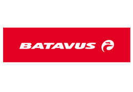 Batavus website