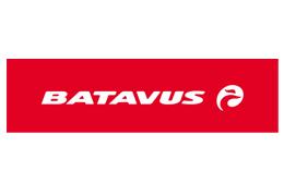 Batavus website